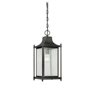 Dunnmore 1 Light Outdoor Hanging Lantern in Black Finish by Savoy House 5-3455-BK