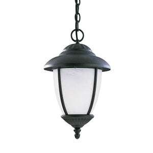 Yorktown 1 Light Outdoor Lighting in Forged Iron Finish by Sea Gull 60048EN3-185