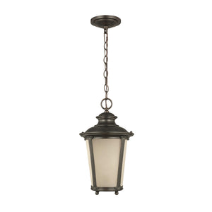 Cape May 1 Light Outdoor Lighting in Burled Iron Finish by Sea Gull 62240-780