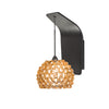 Gia Pendant Wall Sconce with Champagne Diamond Crystal in Rubbed Bronze