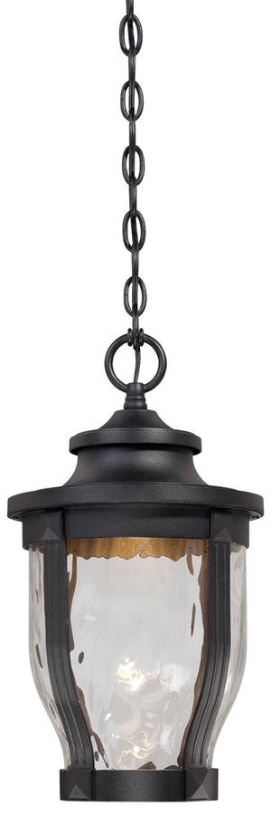 Merrimack 1 Light Outdoor Pendant In Black Finish by Minka Lavery 8764-66-L