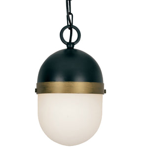 Crystorama CAP-8505-MK-TG Brian Patrick Flynn for Crystorama Capsule Outdoor 1 Light Pendant