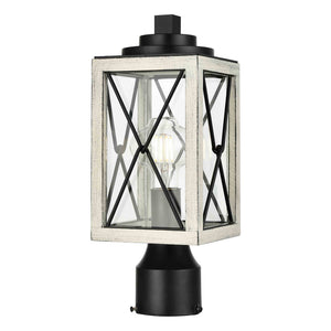 County Fair Outdoor 1 Light Outdoor Post Lamp in Black and Birchwood On Metal with Clear Glass by DVI Lighting DVP43377BK+BIW-CL