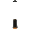 Fahrenheit 1 Light LED Pendant By Troy F5541 in Textured Black W-Gold Leaf Finish