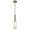 Aeon 1 Light Pendant By Troy F6273 in Carbide Blk & Pol Nickel Finish