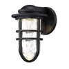 Steampunk 9in LED Outdoor Wall Sconce 3000K in Black