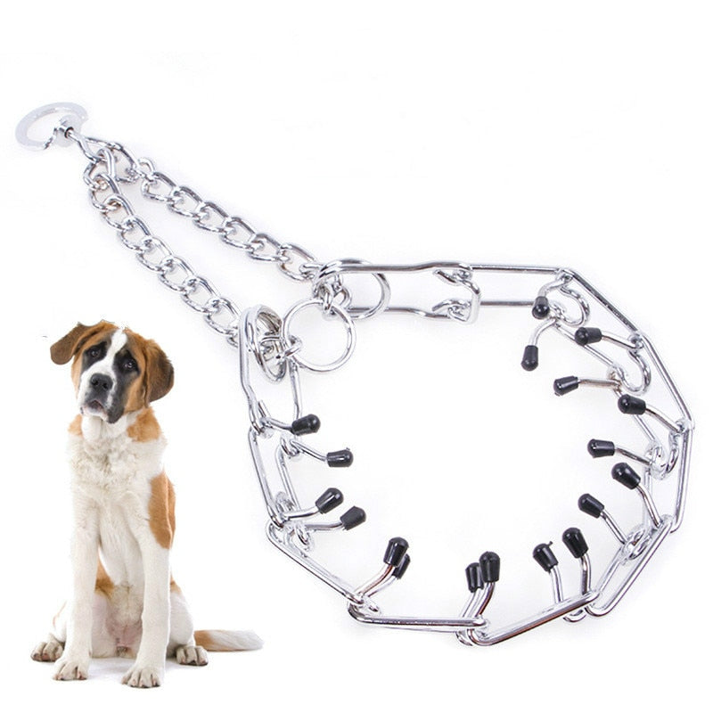 Training Chain for Dogs