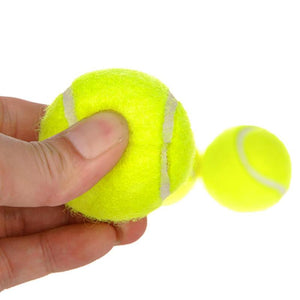 Dog Tennis Ball Chew Toys