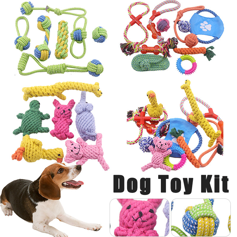 Teeth Cleaning Multi Toy Kit