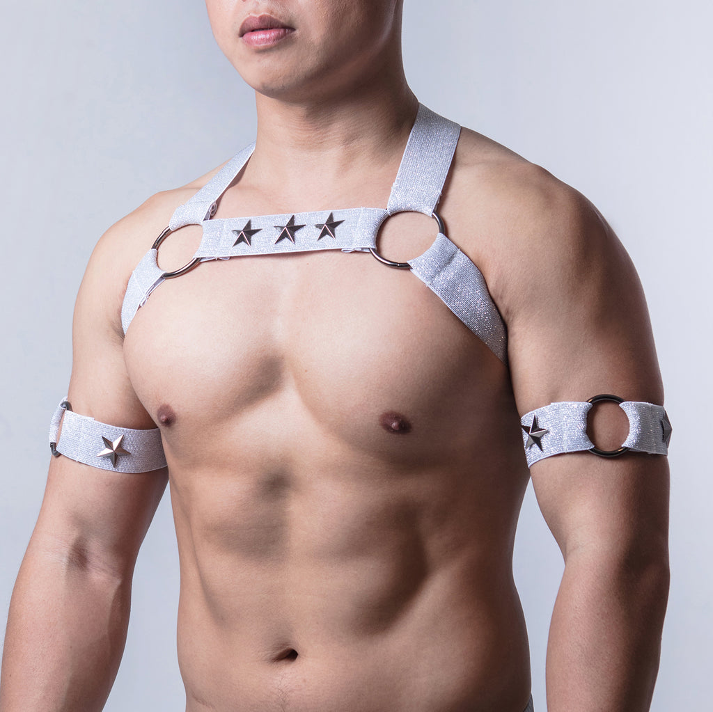 AJ Party King Classic White Snow Harness