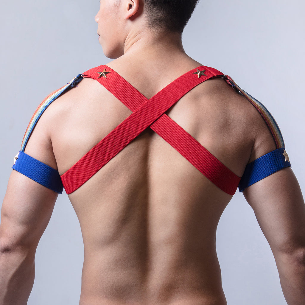 AJ Party King Rainbow Shoulder Pride Harness