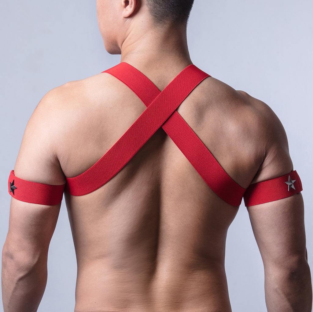 AJ Party King Classic Red Harness