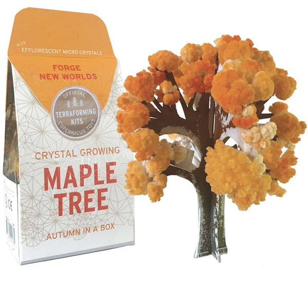 Copernicus Toys - CRYSTAL GROWING MAPLE TREE - Two Little Birds Boutique