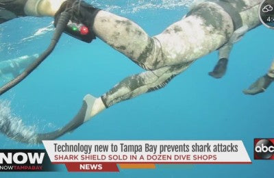 A device new to Tampa Bay protects from shark attacks