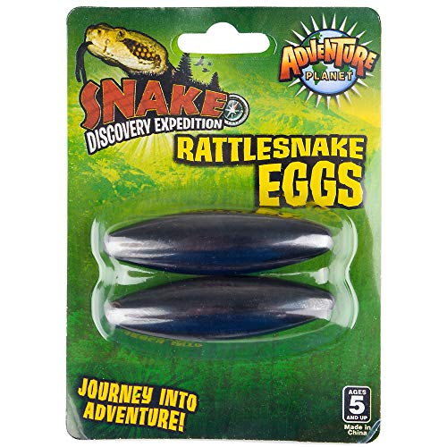 "MEKBOK (2.5"") Extra Large Singing Buzzing Rattlesnake Eggs Hematite Magnets Therapy RM2865"