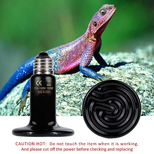 Snake Heat Lamp with Digital Thermometer