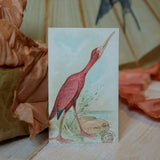 Gift card - bird - Sköna hem, Dessin Design