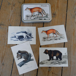 Tin box with 20 Nordic animals vintage style cards, Sköna Ting, Dessin Design