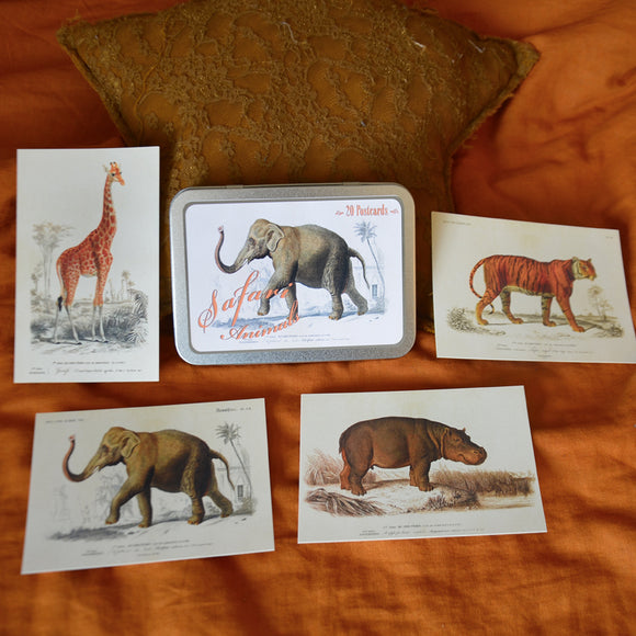 Tin box with 20 Safari animals vintage style cards, Sköna Ting, Dessin Design