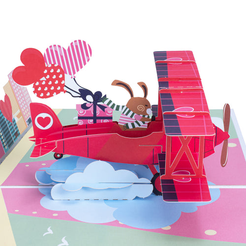 Love Biplane Pop Up Card