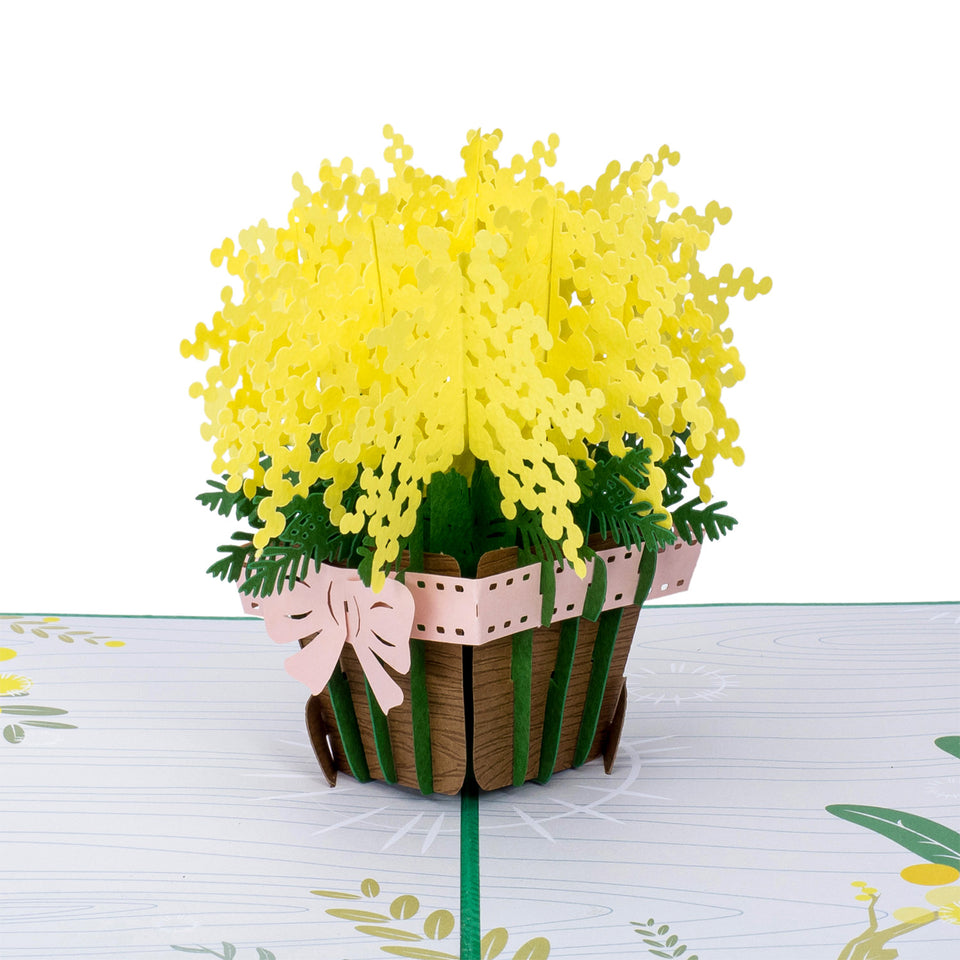 Mimosa Pop Up Card