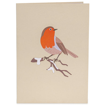 Robin Pop Up Card