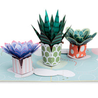 Succulents Pop Up Card
