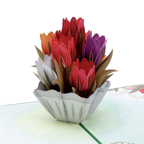 Tulips pop-up card