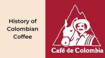 Everything You Need To Know About Colombian Coffee