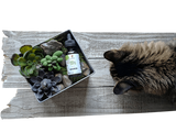 Purfurred: CBD for Cats