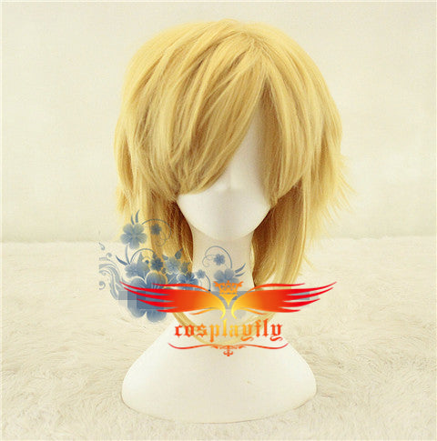 The Legend of Zelda Link Cosplay Wig Video Game Cosplay
