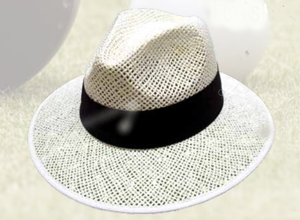 Avenel Panama Straw Men's Hat