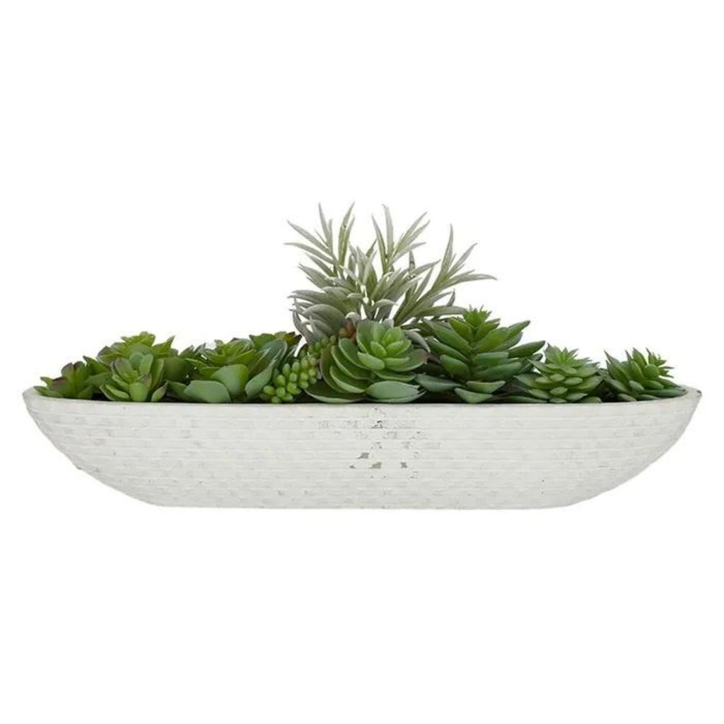 Succulent in white boat-thenestsw