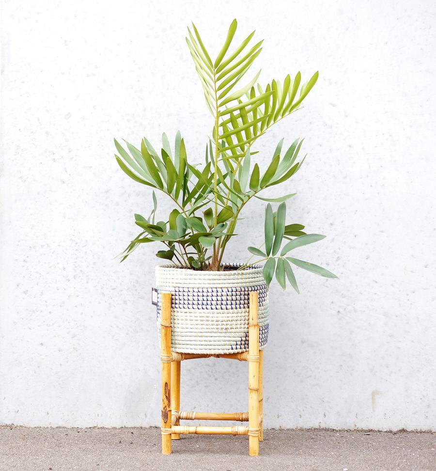 Kaysa Planter Pot on Stand-thenestsw