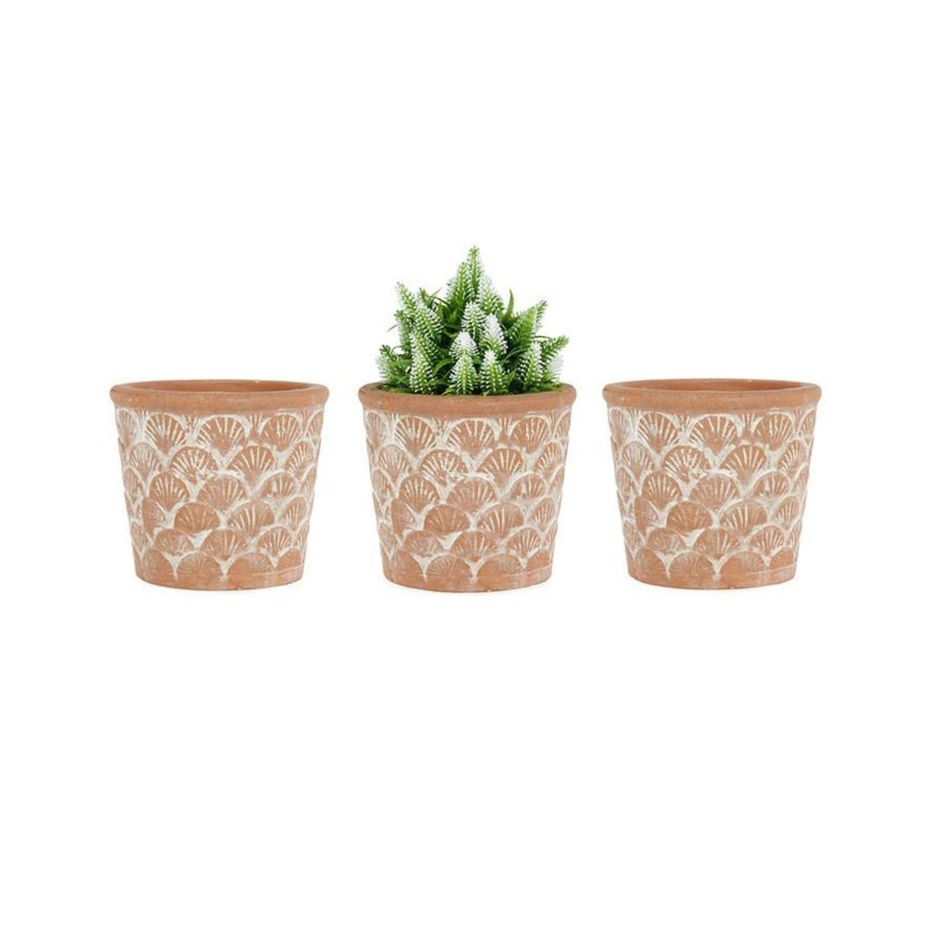 Brushed Terracotta Fan potplanters-thenestsw