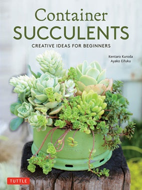 Container Succulents: Creative Ideas for Beginners-thenestsw
