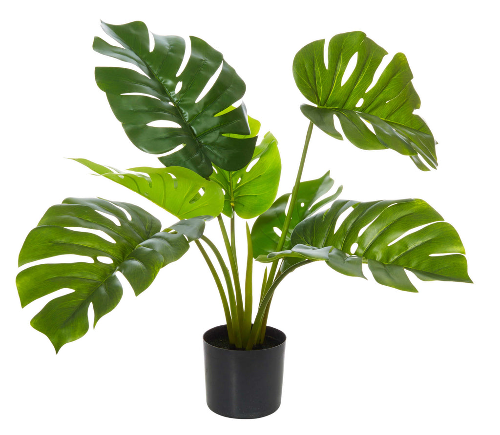 Monsteria Plant artificial-thenestsw