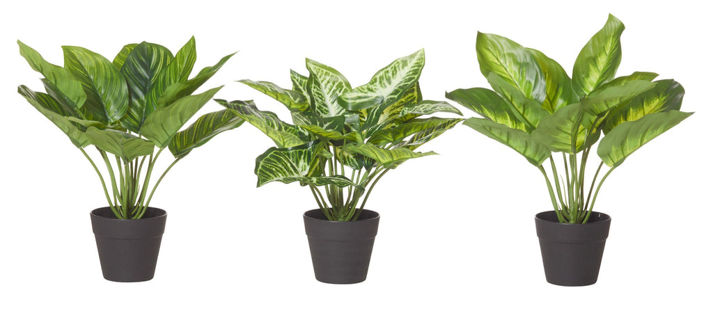 Artificial Plants Indoor asst-thenestsw