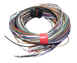 2.5 m long 'B' loom to suit G4 and G4+ ECUs