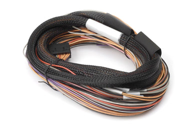 IO 12 Expander Flying Lead Harness LENGTH: 2.5m (8')