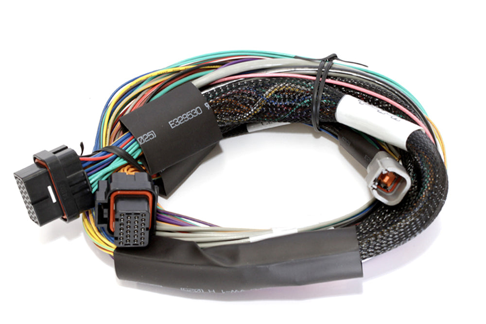 Elite 1000 Basic Universal Wire-in Harness LENGTH: 2.5m (8')