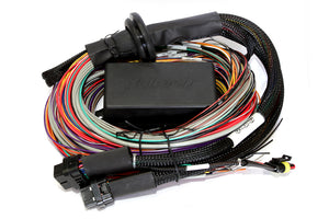 Elite 2500 & 2500 T Premium Universal Wire-in Harness LENGTH: 2.5m (8')