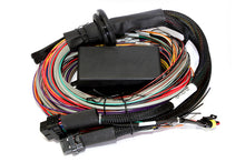 Load image into Gallery viewer, Elite 2500 + Premium Universal Wire-in Harness Kit LENGTH: 2.5m (8')