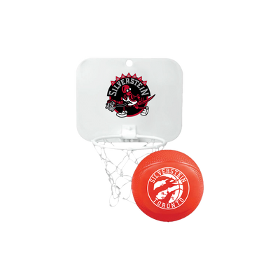 Raptorbot Basketball Hoop