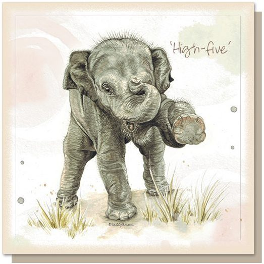Card – High Five | Gifts | The Shrine Shop