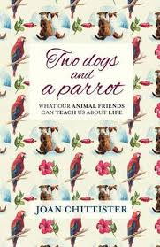 Two Dogs and a Parrot | Books, Bibles & CDs | The Shrine Shop