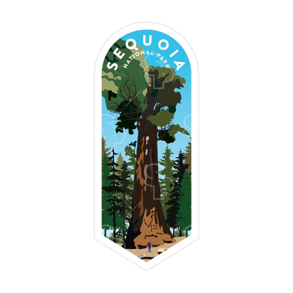 1638 - Clean Np Badge Sequoia