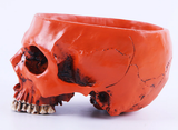 Human Skull Bowl - no engravings