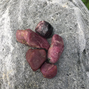 Raw Ruby Crystal Healing Set for Cellular Regeneration