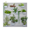 Stor-A-Wall - Green Wall Storage Kit - Ace of Space